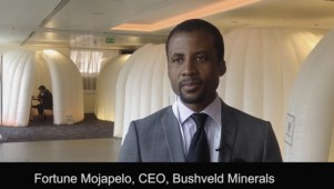 Bushveld Minerals - Update at 121 Mining Investment
